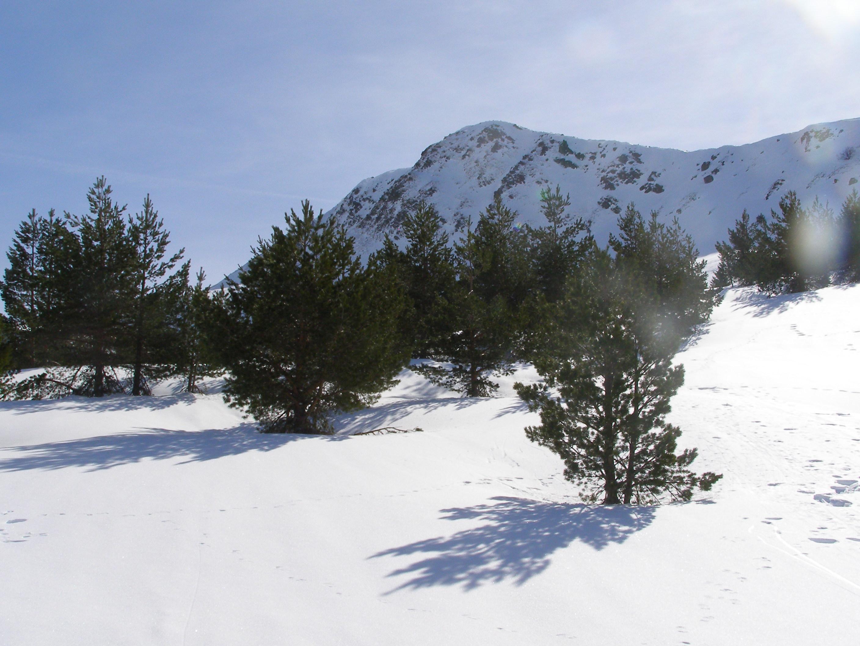 Pico Lago.